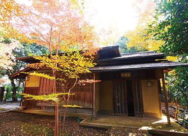 武蔵塚公園 茶室02