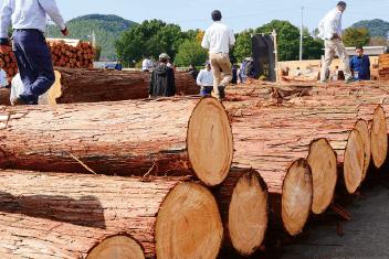 熊本木材株式会社