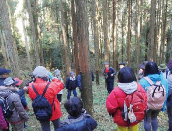 南郷檜の森で森林浴02